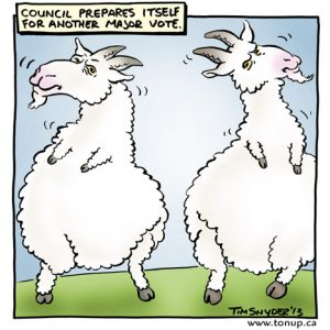 Council Debates
