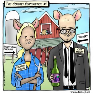 County Experience no1