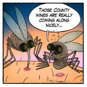 wine mosquito