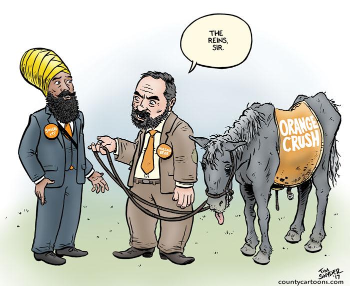 NDP Reins